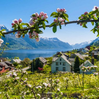 La Norvège nature