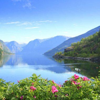 L'essentiel des fjords